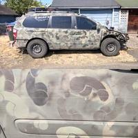 Pénis de camouflage