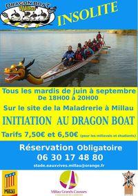 Dragon Boat Z