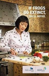 Publicité pour la protection des grenouilles