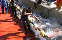Ball trap de pêcheurs