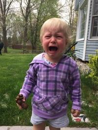 Il n'y a pas que des oeufs en chocolat dans le jardin