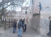 Russian Angry Birds