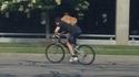 Ils peuvent même faire du vélo !