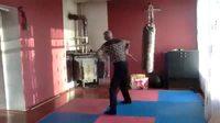 regis invente un art martial