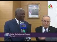 Pendant ce temps, à la télé algérienne