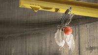 De la boule de bowling ou de la plume, qui tombe le plus vite ?