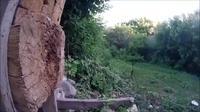 Lancer sur tronc
