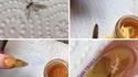 Les ongles de John Hamonnd
