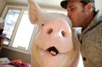 Toi ma cochonne, je t'aime !
