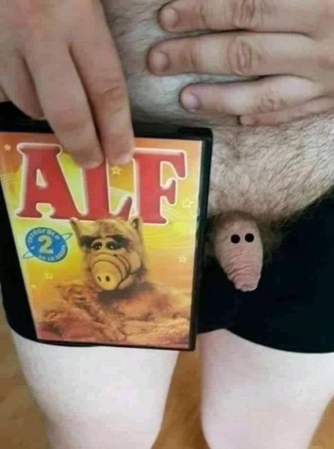 Alf, cet alien qui bouffait des chattes !