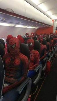 Des araignées dans l'avion