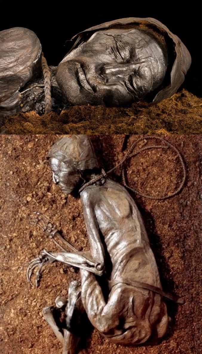 Voici l'homme de Tollund, retrouvé en 1950 au Danemark dans une tourbière, il aurait vécu entre 375 et 210 avant Jésus Christ. Son corps momifié est dans un état de conservation exceptionnel. Au point que l'on crut à une mort récente car on a retrouvé la corde servant à le pendre encore attachée à son cou ! Venant sous doute d'un peuple germanique, la corde laisse penser à une mise à mort après un jugement. Il avait alors entre 30 et 40 ans.  Il est visible au Musée de Silkeborg dans le Jutland au Danemark.  Vous pouvez agrandir pour voir les détails du visage.
