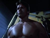 Arnold's boobs