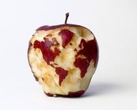 Pomme du monde