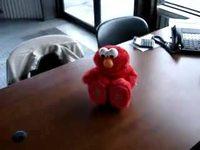 Elmo est mort de rire