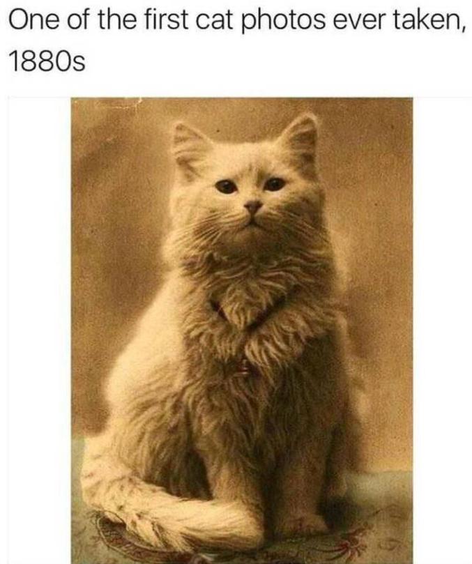 Dans les années 1880.