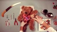 L'opération de Teddy