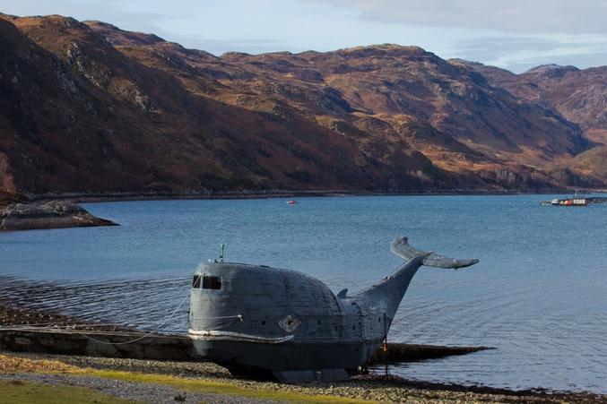Tom McClean, ancien commando SAS, a navigué sur 3000 miles à travers l'Atlantique dans cette étonnante baleine de 65 pieds (20 mètres), fait-maison, appelée Moby. Il lui a fallu 20 ans pour construire cet animal de 62 tonnes sur la rive du Loch Nevis, près de Lochaber, dans les Highlands en Ecosse, et il lui en a coûté 100 000 £.