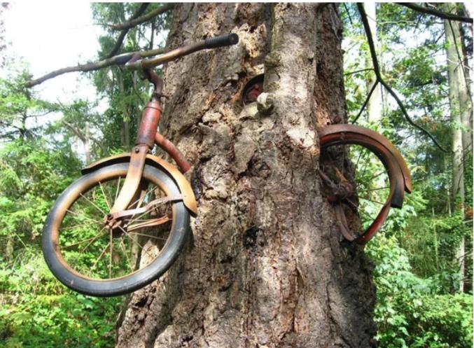 Kan tu te souviens 20 ans après ta première cuite où tu avais garé ton vélo ...