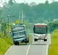 Dos d'âne carabiné ou courses de bus ?