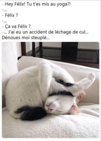 Felix?