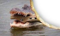 Croc³