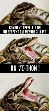 Comment appelle-t-on un serpent de 3,14 m?