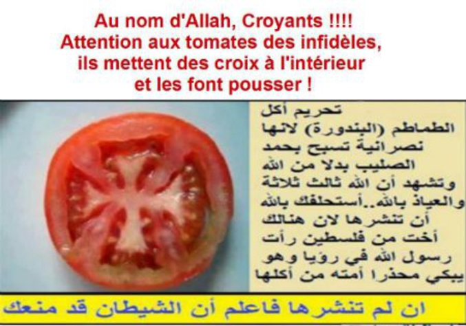 Symbole honni par les salafistes.