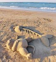 Patée de sable