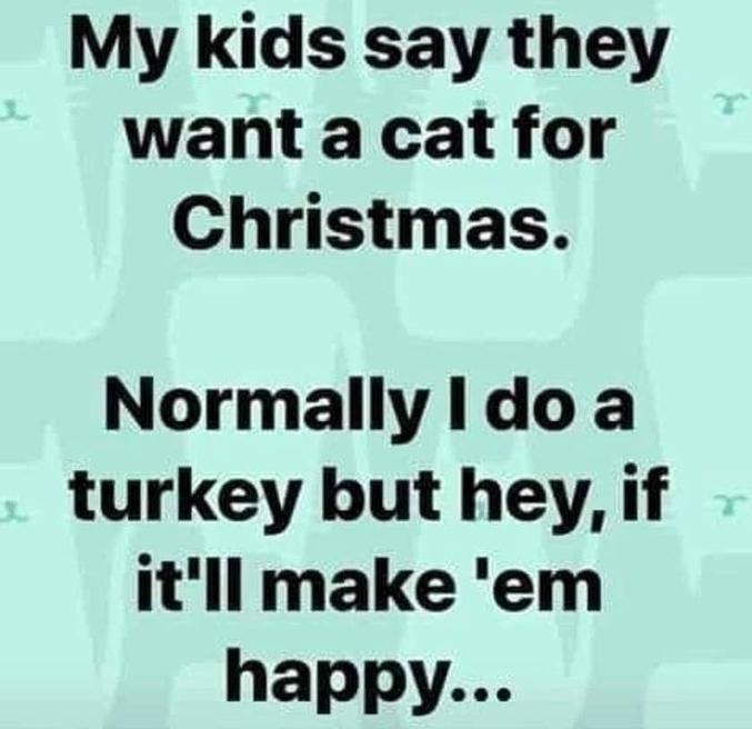 Mes enfants disent qu'ils veulent un chat pour Noël. Normalement, je fais une dinde mais, ma foi, si ça peut les rendre heureux...