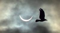 Eclipse à l'irlandaise