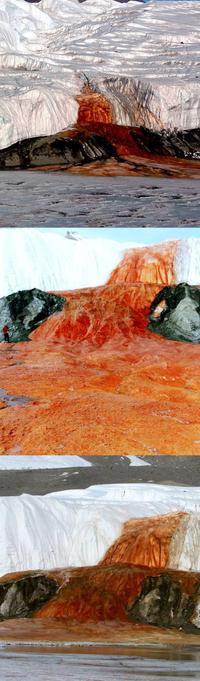 Cascade de sang