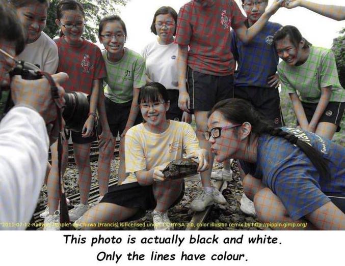 Cette photo est en noir et blanc, seules les lignes sont en couleur.