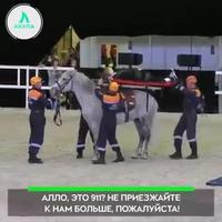 Tacle arrière sur cheval !!!