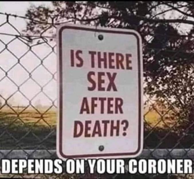 """Pour les anglophobes """"- Y'a t'il du sexe après la mort ? - ça dépend de ton médecin légiste"""""""