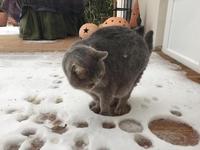 La neige, c'est de la lave