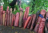 Une idée pour décorer le jardin d'Orme ?