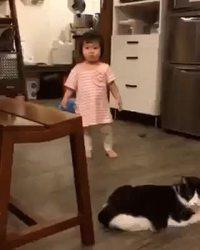 Encore un connard de chat