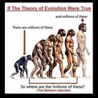 Evolution toujours