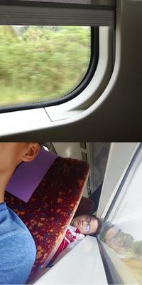 Quand tu n'arrives pas à fermer le volet dans le train