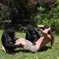 Entraînement de Tarzan