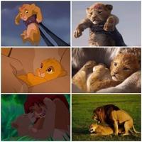 Le roi lion film live comparaison