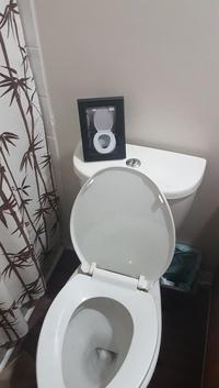 Déco de toilettes