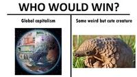 Un combat inégal