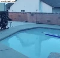 Surf sur piscine