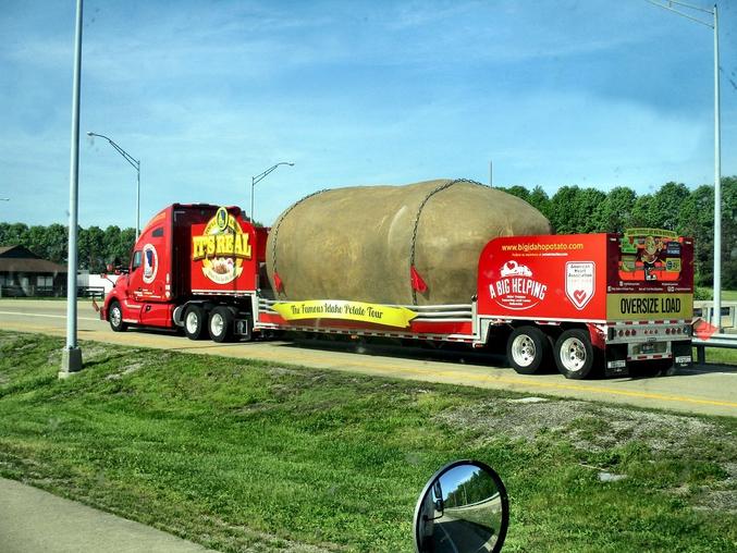 La plus grosse pomme de terre de l'Idaho.