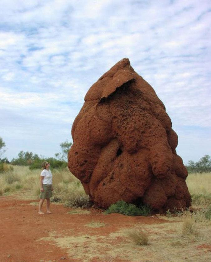 ... ou roche volcanique?