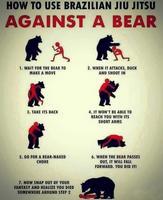 Comment utiliser le jiu jitsu brésilien contre un ours .
