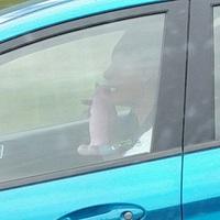 Chanter dans son godemichet sur l'autoroute