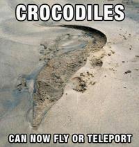 Peur des crocodiles ?